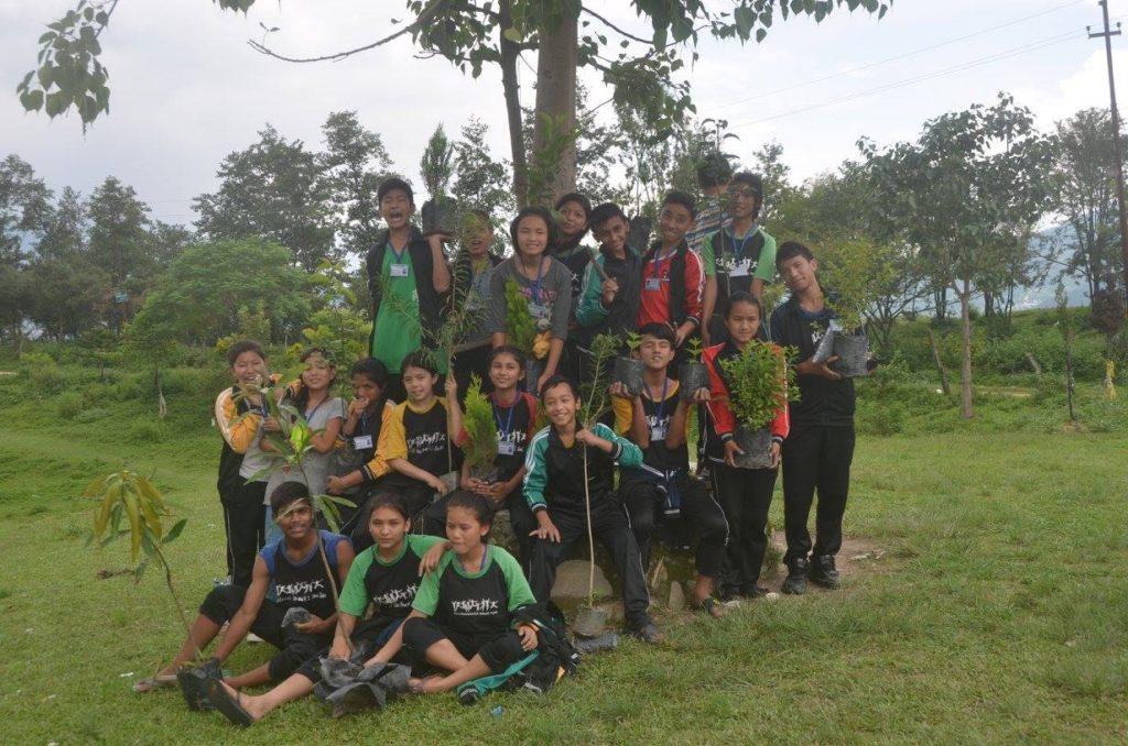 GreenRevo (8)